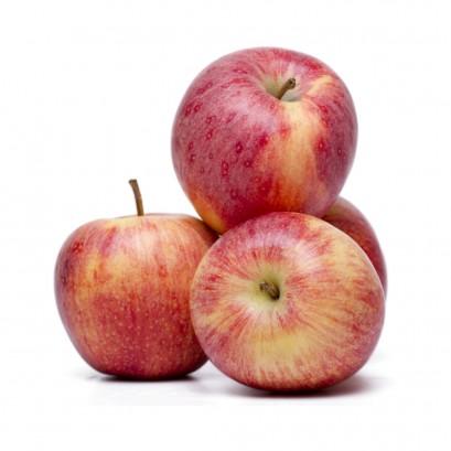 õun gala