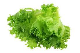 Salat Frillice