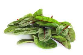 Salat Mangold